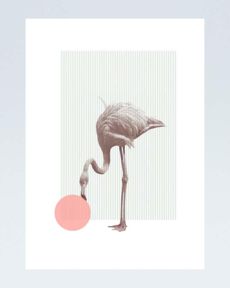 """A Poster A Day"" (Дизайн постера)"