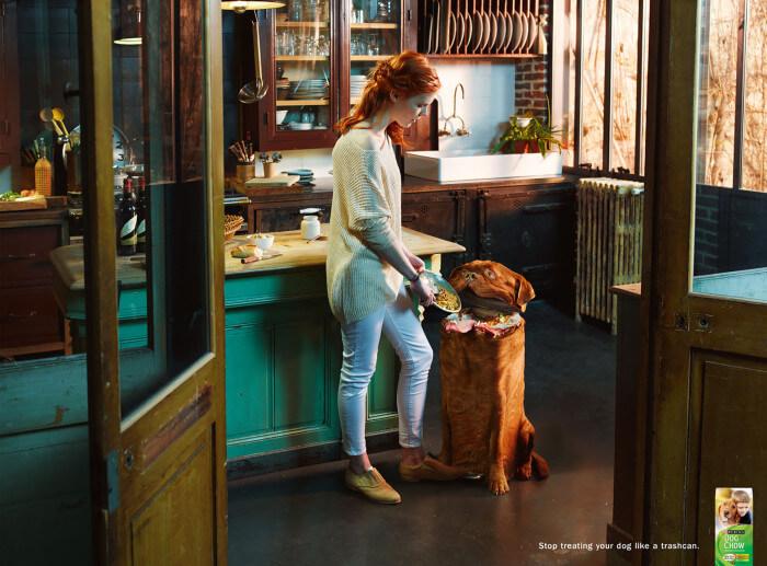 Шедевры рекламы - Собака Чоу