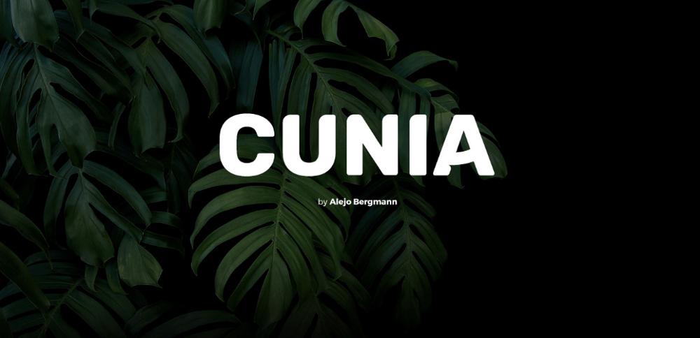 Красивый шрифт Cunia