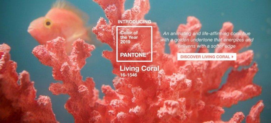 Цвет 2019 — Живой корал