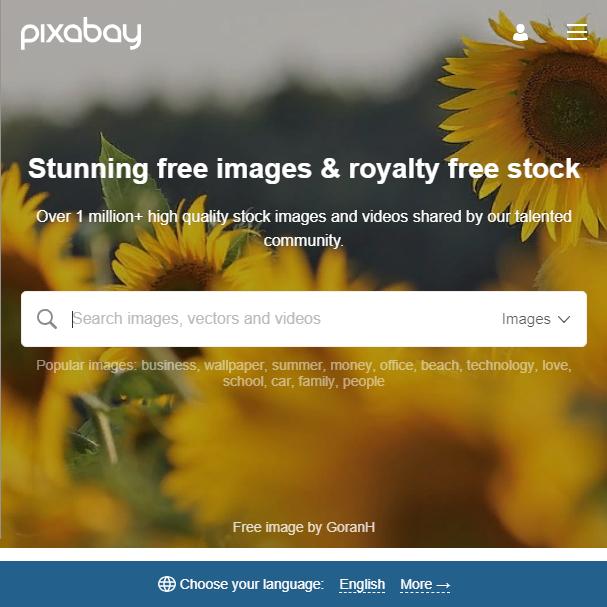 Видеосток Pixabay