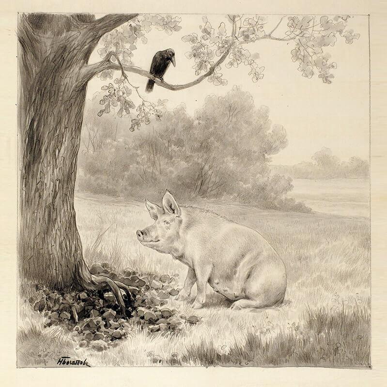 иллюстрация к басне свинья под дубом