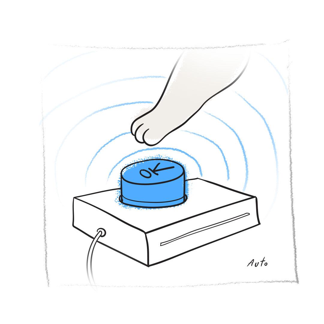 Автоматизированный процесс проверки продукта
