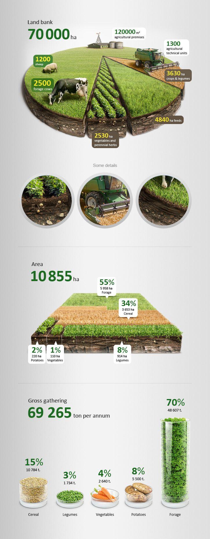 Активы сельскохозяйственного холдинга в виде инфографики