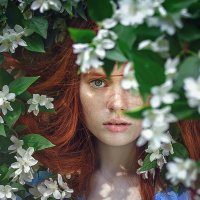 Аватар пользователя Алиса Чехова