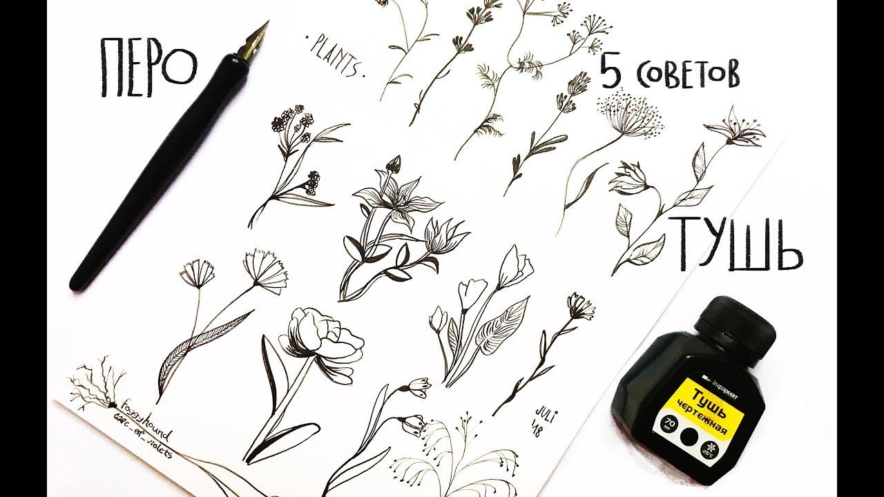 Перо и Тушь | 5 советов для рисования | speedpaint